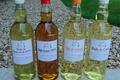 huilerie Lacroix, huile de pépin de raisin