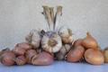ferme de Rigny,  Ail, oignon, échalotte