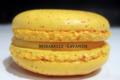 Patrick Migeon, macaron mirabelle-lavande