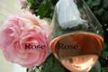 Lamé Delisle Boucard, bourgueil rosé