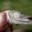 La Bourriche aux Appetits, conserverie artisanale de Chambord