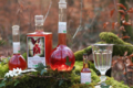 Awen nature, absinthe rouge