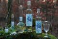 Awen nature, absinthe finn blanche