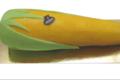 L'épi de maïs