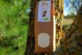 La ferme des Bouviers, Farine de Seigle complète BIO