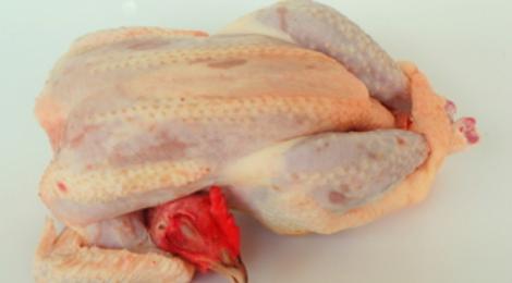 Les poulets du Campanier, Poulet entier