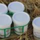 La ferme de Vindrac, yaourts nature