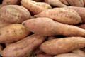le jardin d'André, patate douce