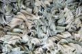 la fabrik des 1001 pâtes, Fusillis séchés à la laitue de mer
