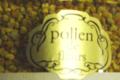 Miellerie de Huelgat,   Pollen
