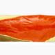 Bande de Saumon origine Norvège ou Écosse