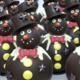 Albert Chocolatier