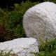 Fromagerie du Pic, Cabecou d'Autan