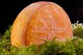 fromagerie du Pic, Le Jefou