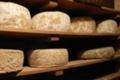 Tomme Normande