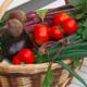 les saveurs de Kienheim, panier de saison