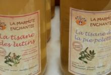 La Marmite Enchantée, Tisane de la Pie-Pelette