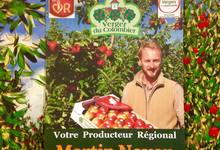 PRODUCTEUR REGIONAL DES HAUTS DE FRANCE : Martin NOYON