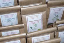 Asinerie et plantes Du Cul Du Bois, Trélod glacé