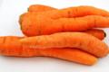 EARL de Montépain, carotte