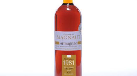 Domaine de Magnaut - Armagnac Millésime 1981
