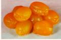 confiserie Léonard Parli, abricots rosés de Provence