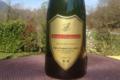Vins Salomon, pétillant blanc de blanc