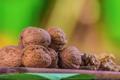 La ferme du Goubet, noix de Grenoble