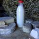 """Chalet d'alpage """"chez Pépé Nicolas"""", lait"""