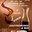 Affiche 1er SALON VINS GASTRONOMIE & BIO de Soumoulou (64)