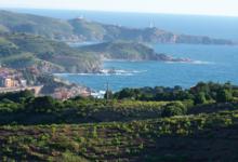 Domaine Vial Magnères