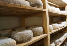 """Fromagerie """"La gentiane des Pyrénées"""", tomme de vache au lait cru"""