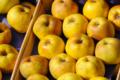 Saor Fruits, pommes