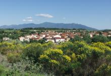 Domaine clos Massotte
