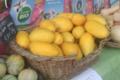 La Palette bio, melon jaune