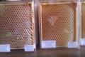 mielleuse des deux ruches, la bresque de tamaris