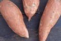 domaine des 4 saisons, patate douce
