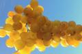 Amethyste-fruits, raisin