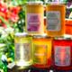 Le rucher de Cadarcet, miel de forêt
