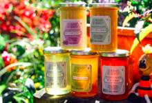Le rucher de Cadarcet, miel de fleurs