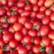 La Clède, tomate cerise