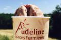 Audeline, glace au lait de brebis