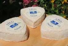 Matthieu Bouette, fromages de chèvre
