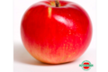 Rothgerber – ferme fruitière. Akane
