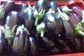 Ferme Des Vallees. aubergines