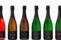 Champagne Serveaux Fils. Blancs de Vallée