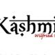 La Nouvelle Don(n)e. Kashmir