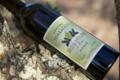 Domaine de Torraccia. Huile d'olive