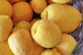 L'Ortulinu. citron