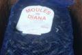 Pesc' In Balagna. Moules de Diana